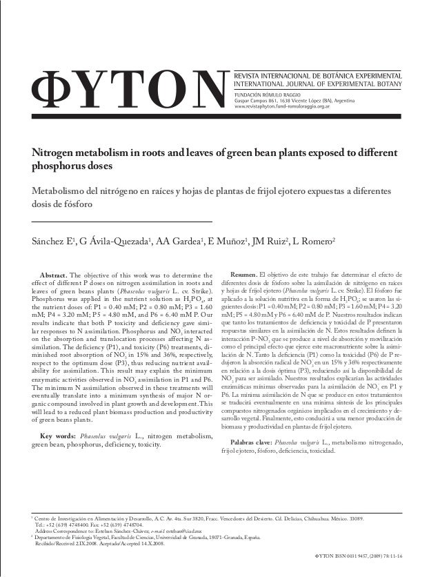 Nitrogen metabolism in roots and leaves of green bean plants exposed to different phosphorus doses Metabolismo del nitróge...
