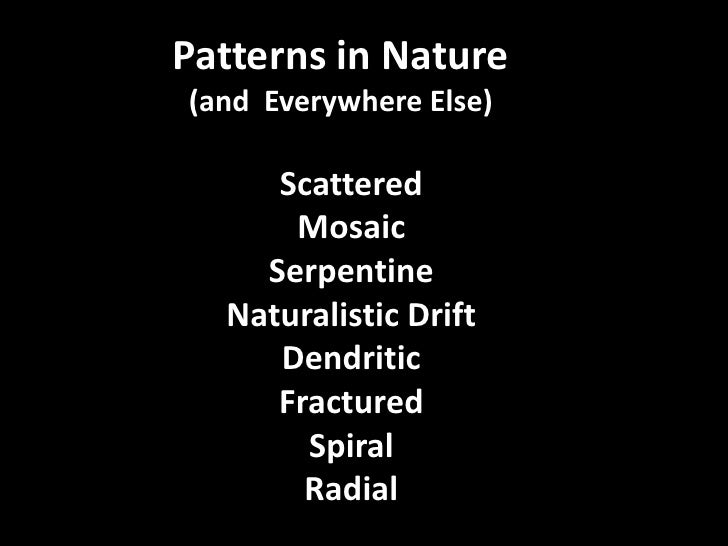 Patterns in Nature<br />(and  Everywhere Else)<br />Patterns in Nature<br />(and  Everywhere Else)<br />Scattered<br />Mos...