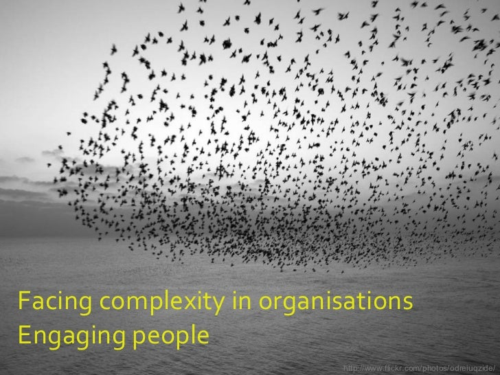 Facing complexity in organisations Engaging people http://www.flickr.com/photos/odreiuqzide/