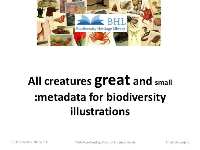 All creatures great and small            :metadata for biodiversity                    illustrationsDLF Forum 2012 Denver ...