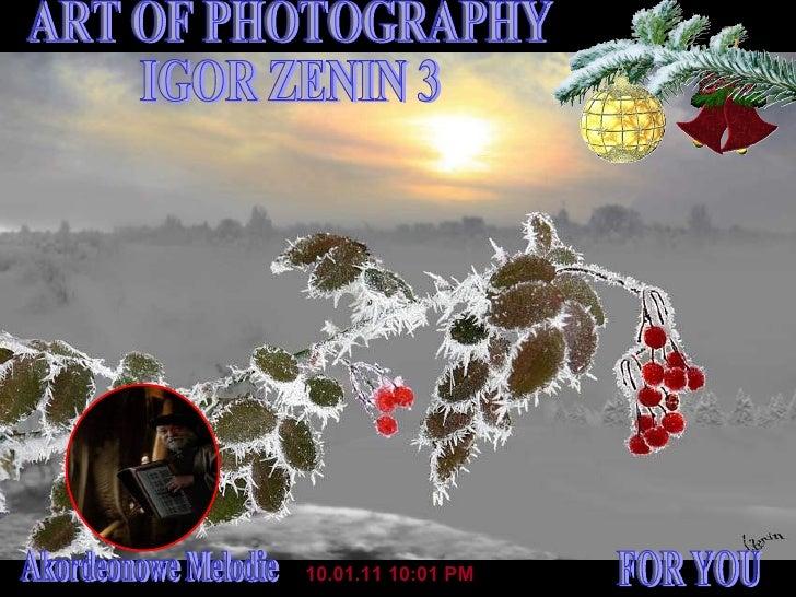 10.01.11   10:01 PM ART OF PHOTOGRAPHY IGOR ZENIN 3 FOR YOU Akordeonowe Melodie