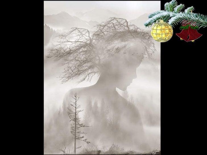 Art  of  photography  igor  zenin 3 (nx power lite)