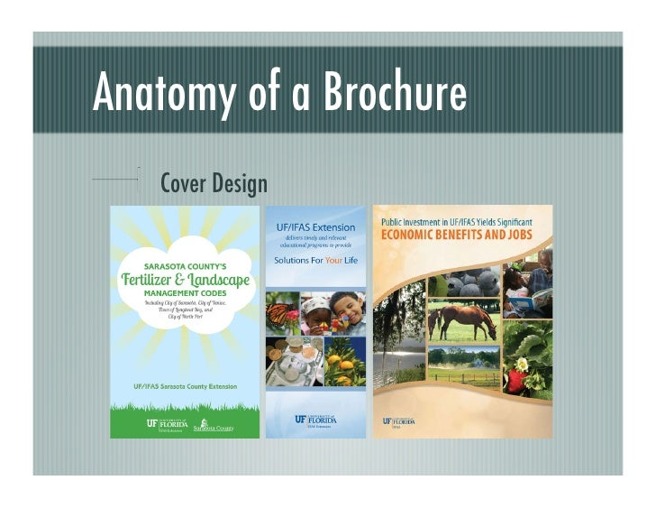 The Art Of The Promotional Brochure