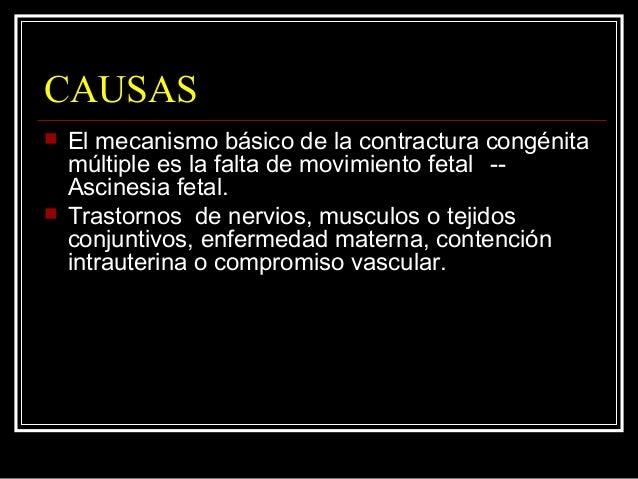 CAUSAS  El mecanismo básico de la contractura congénita múltiple es la falta de movimiento fetal -- Ascinesia fetal.  Tr...