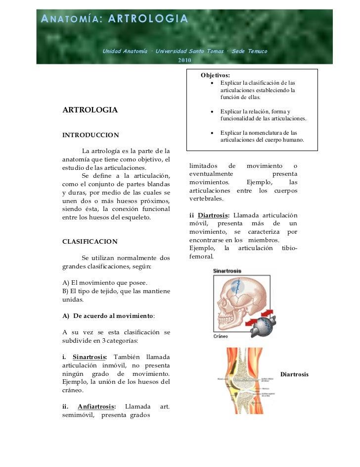 ANATOMÍA: ARTROLOGIA                Unidad Anatomía · Universidad Santo Tomas · Sede Temuco                               ...