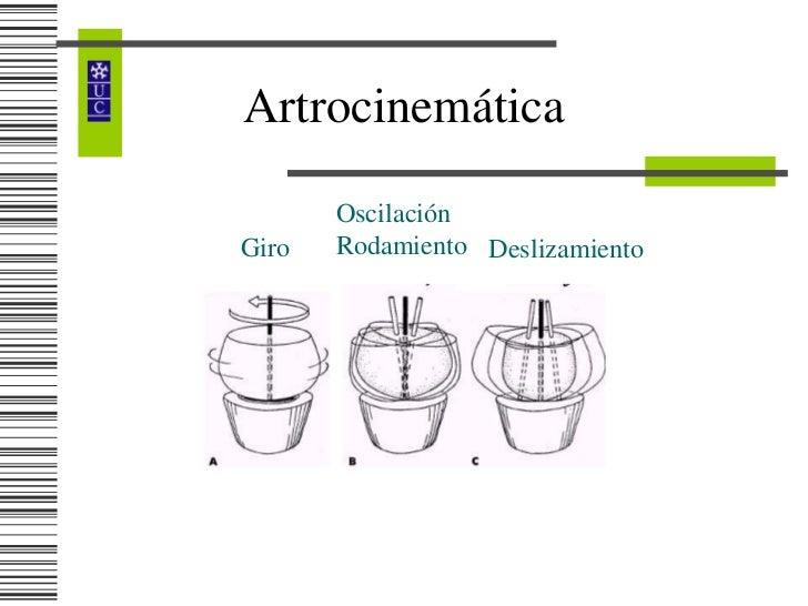 Osteocinematica pdf