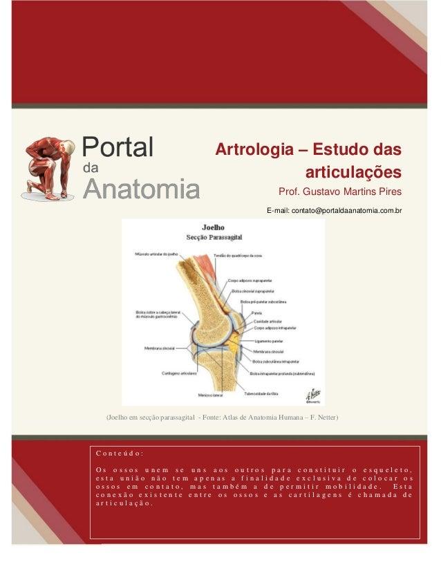 Artrologia – Estudo das articulações Prof. Gustavo Martins Pires E-mail: contato@portaldaanatomia.com.br C o n t e ú d o :...