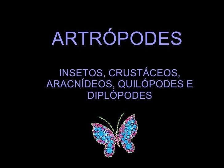 ARTRÓPODES INSETOS, CRUSTÁCEOS, ARACNÍDEOS, QUILÓPODES E DIPLÓPODES