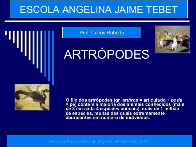 ARTRÓPODES O filo dos artrópodes (gr. arthros = articulado + poda = pé) contém a maioria dos animais conhecidos (mais de 3...