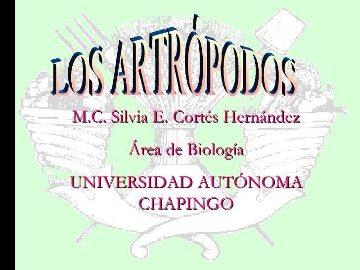 M.C. Silvia E. Cortés Hernández Área de Biología UNIVERSIDAD AUTÓNOMA CHAPINGO LOS ARTRÓPODOS