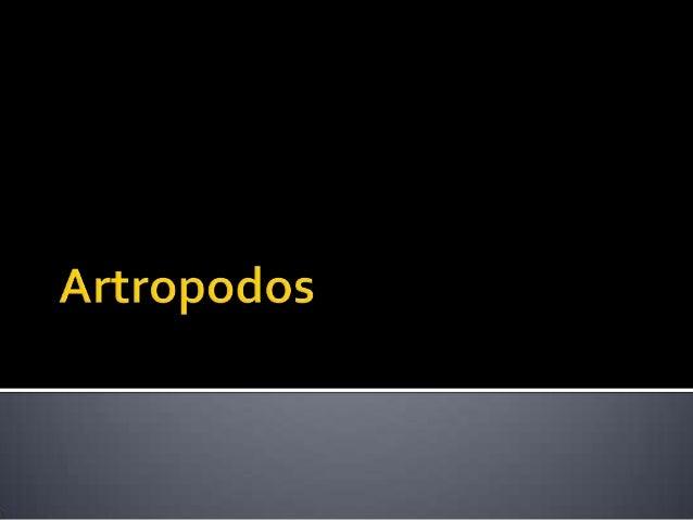 """ Los artrópodos (Arthropoda,  del griego αρθρον, arthron, """"articulación"""" y  πούς, pous, """"pie"""") constituyen el filo más  n..."""