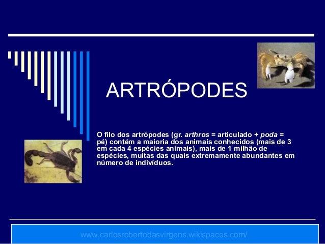 ARTRÓPODES    O filo dos artrópodes (gr. arthros = articulado + poda =    pé) contém a maioria dos animais conhecidos (mai...