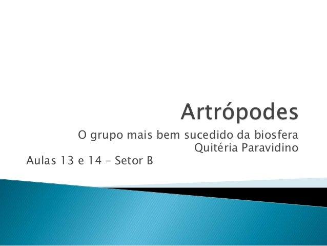 O grupo mais bem sucedido da biosfera Quitéria Paravidino Aulas 13 e 14 – Setor B