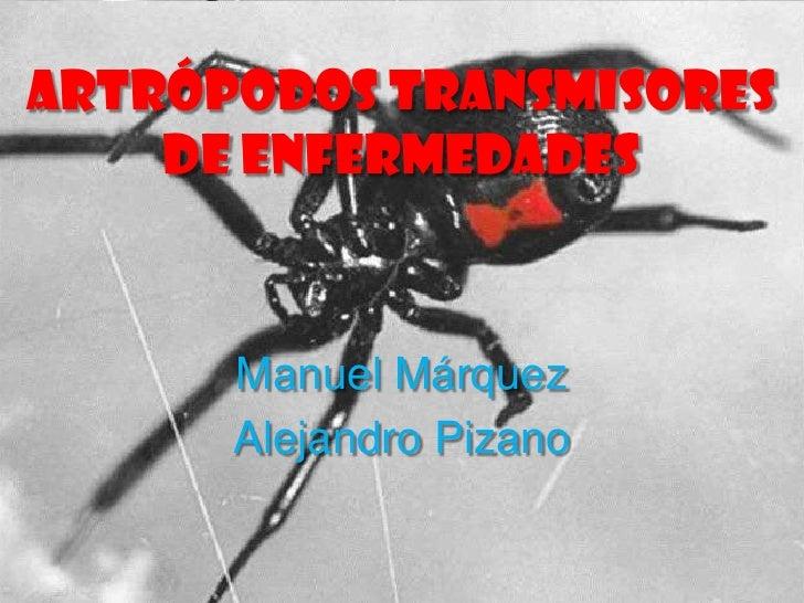 Artrópodos transmisores    de enfermedades      Manuel Márquez      Alejandro Pizano