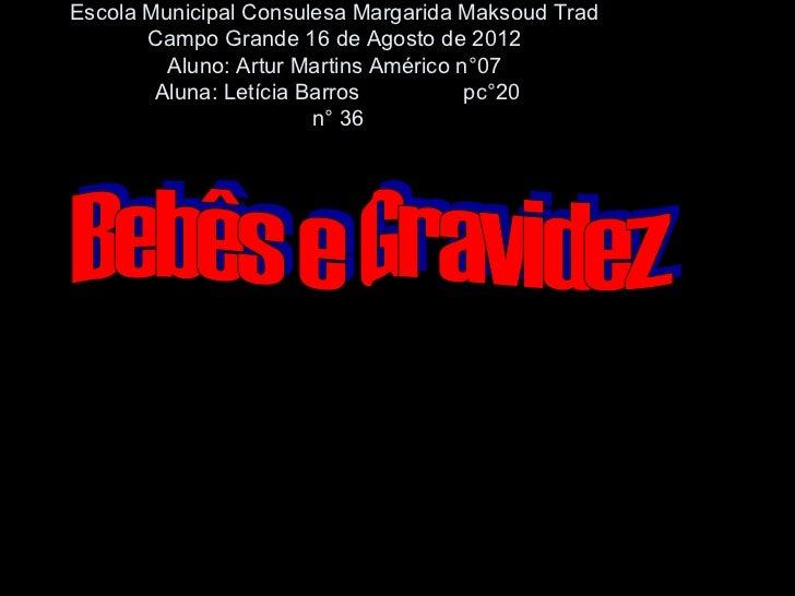 Escola Municipal Consulesa Margarida Maksoud Trad       Campo Grande 16 de Agosto de 2012         Aluno: Artur Martins Amé...