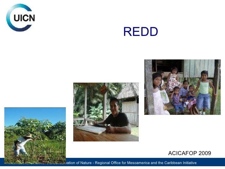 REDD ACICAFOP 2009