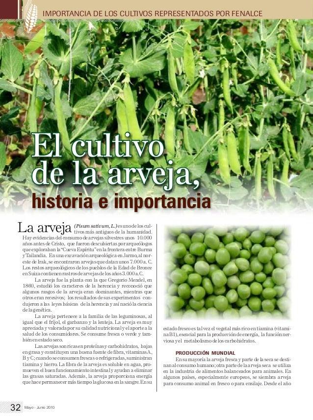 IMPORTANCIA DE LOS CULTIVOS REPRESENTADOS POR FENALCE         El cultivo         de la arveja,         historia e importan...