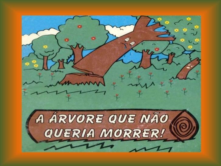 ORGANIZAÇÃOVALDETE SANTOS DE SOUZA CANTÚ       TEXTO E IMAGENS       DOURADOS/MS/BRASIL