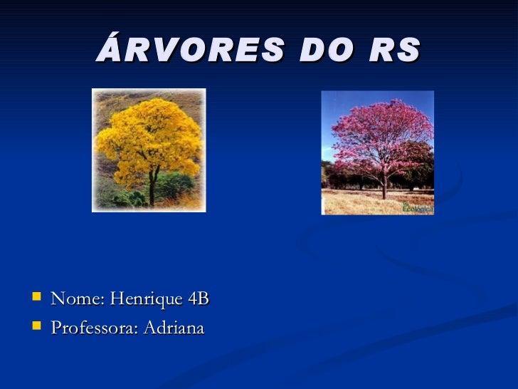 ÁRVORES DO RS <ul><li>Nome: Henrique 4B </li></ul><ul><li>Professora: Adriana </li></ul>