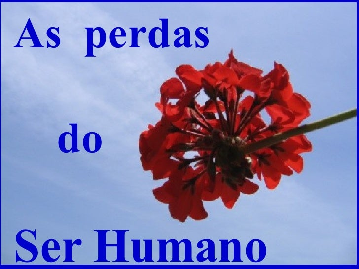 As  perdas  do Ser Humano