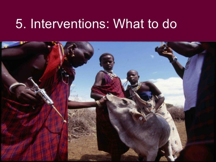 5. Interventions: What to do