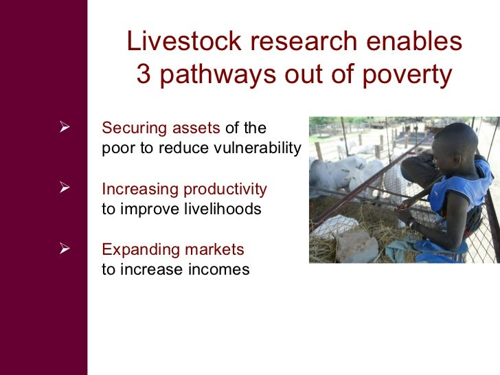 Livestock research enables         3 pathways out of poverty    Securing assets of the     poor to reduce vulnerability  ...