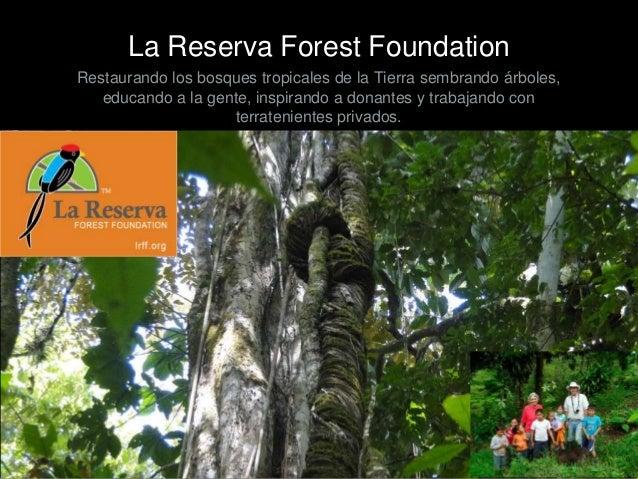 La Reserva Forest Foundation Restaurando los bosques tropicales de la Tierra sembrando árboles, educando a la gente, inspi...
