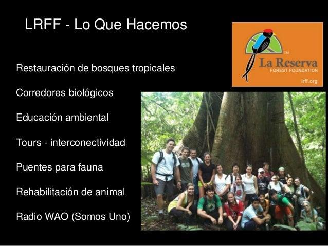 LRFF, Costa Rica General Assembly 2013 (Spanish) Slide 2