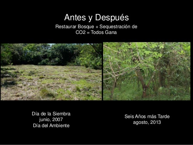 LRFF, Costa Rica General Assembly 2013 (Spanish) Slide 3