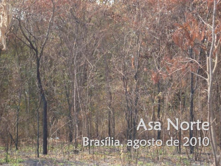 Brasília, Asa norte agosto 2010
