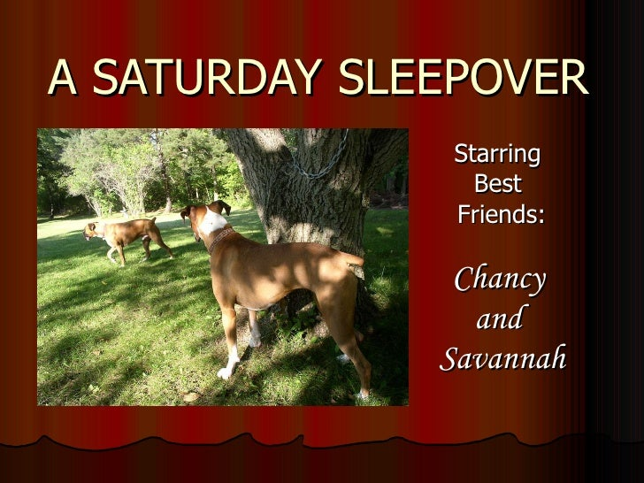 A SATURDAY SLEEPOVER Starring  Best  Friends: Chancy  and  Savannah