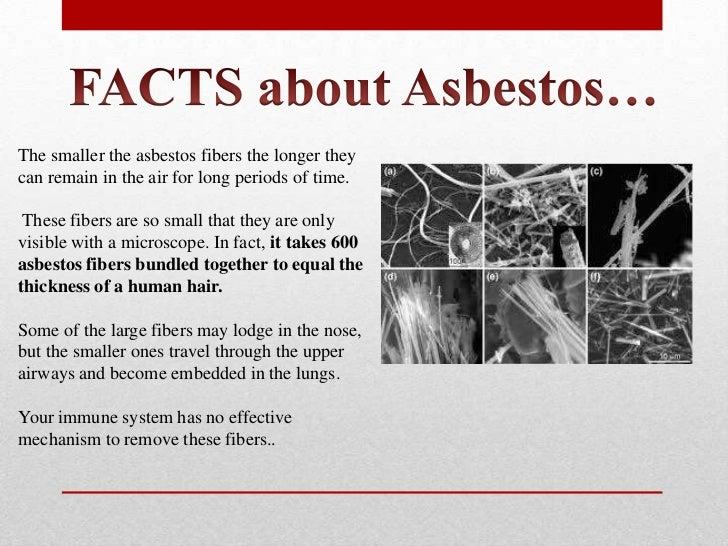 Asbestos Awareness Presentation Contractors Introduction