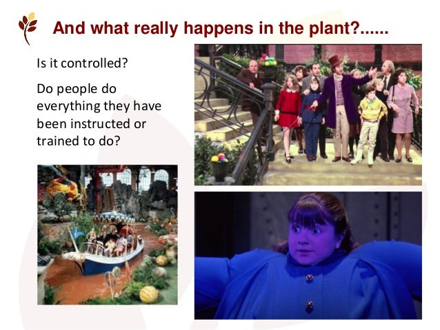 And what really happens in the plant?...... Is it controlled? Do people do everything they have been instructed or trained...