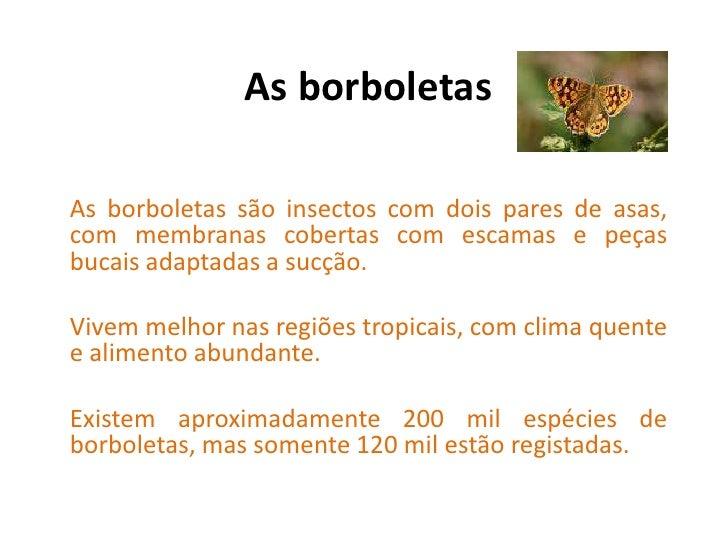 As borboletas<br />As borboletas são insectos com dois pares de asas, com membranas cobertas com escamas e peças bucais ad...