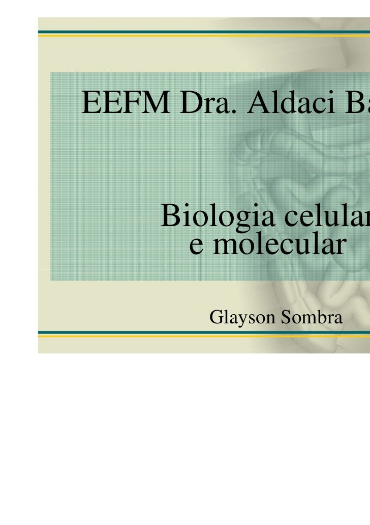 EEFM Dra. Aldaci Barbosa     Biologia celular       e molecular        Glayson Sombra