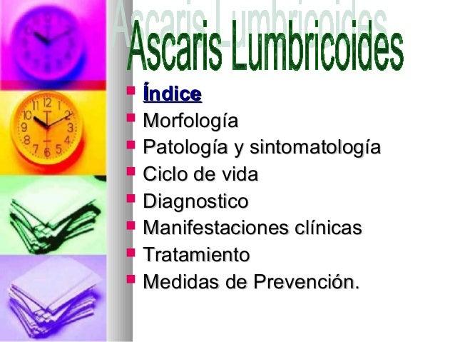    Índice   Morfología   Patología y sintomatología   Ciclo de vida   Diagnostico   Manifestaciones clínicas   Trat...