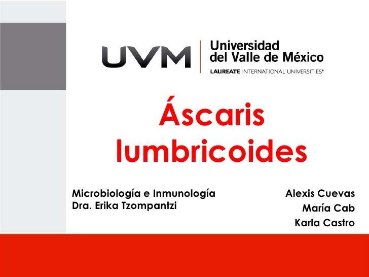 Áscaris        lumbricoidesMicrobiología e Inmunología   Alexis CuevasDra. Erika Tzompantzi            María Cab          ...