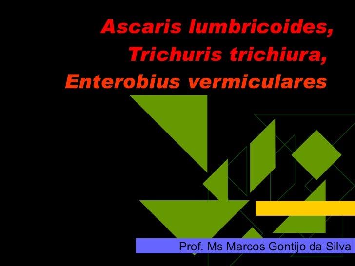 Ascaris lumbricoides, Trichuris trichiura,  Enterobius vermiculares  Prof. Ms Marcos Gontijo da Silva