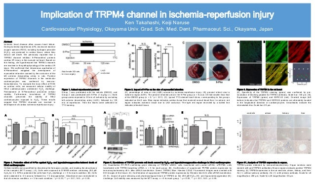 Implication of TRPM4 channel in ischemia-reperfusion injury Ken Takahashi, Keiji Naruse Cardiovascular Physiology, Okayama...