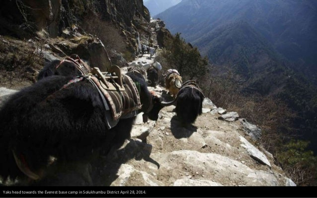 Temba Sherpa, 45, who has reached the summit of Everest seven times, climbs to clean the mani (prayer) stone in Khumjung, ...