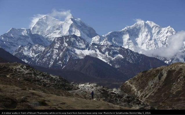 Yaks walk past prayer flags as they carry goods back from Everest base camp in Solukhumbu District May 5, 2014.