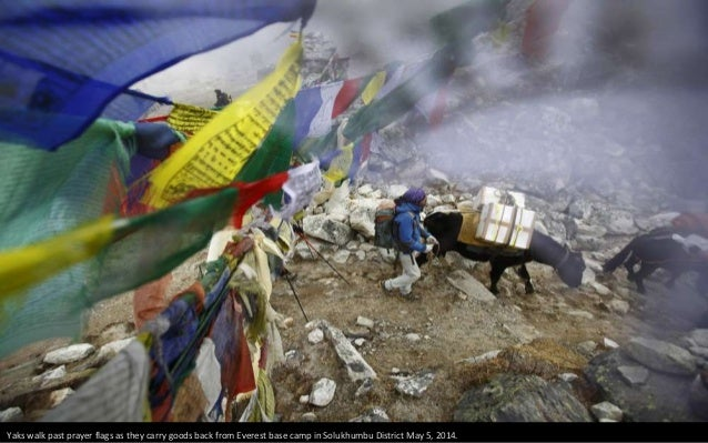 Rubbish collectors pick up rubbish at the near-empty camp.