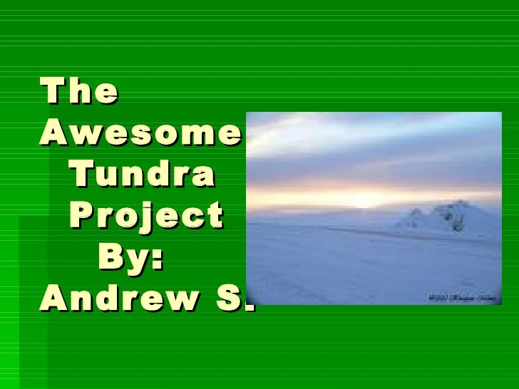 The  Awesome   Tundra   Project   By: Andrew S.