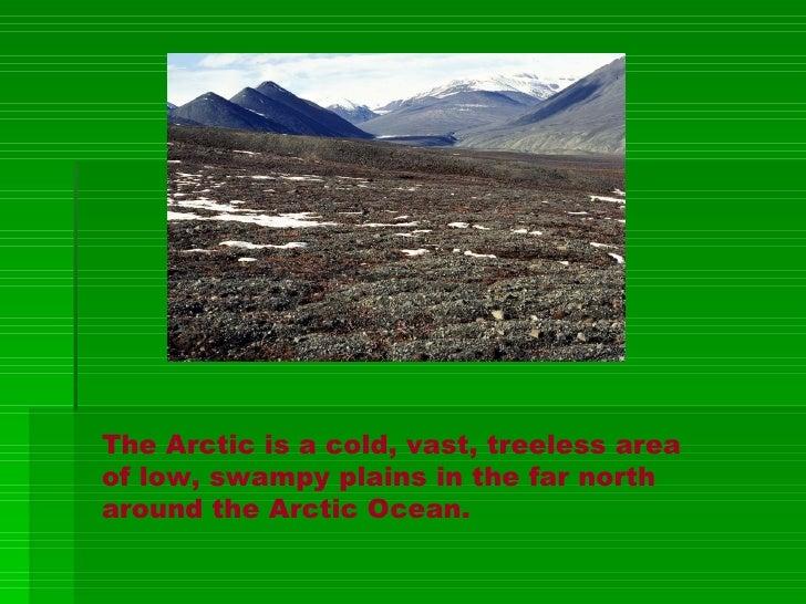A Schenkel Theawsome Tundra