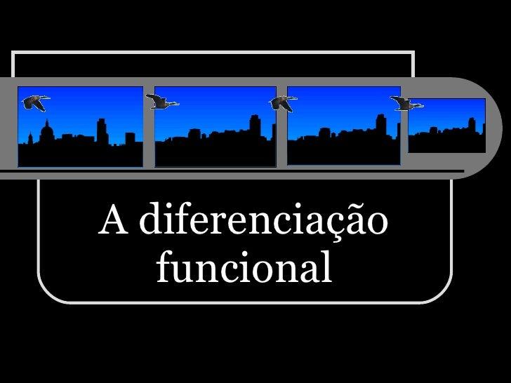 A diferenciação funcional