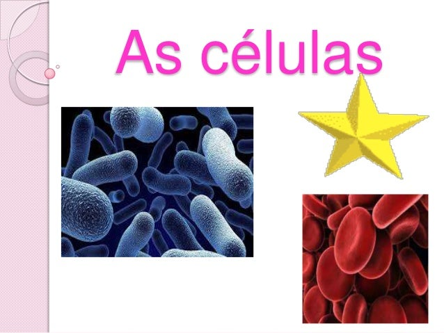 As células