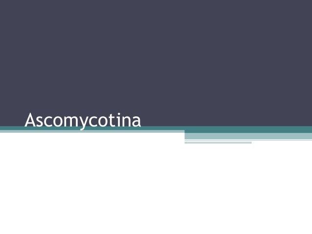 Ascomycotina