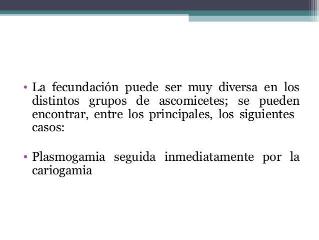 • La fecundación puede ser muy diversa en los distintos grupos de ascomicetes; se pueden encontrar, entre los principales,...