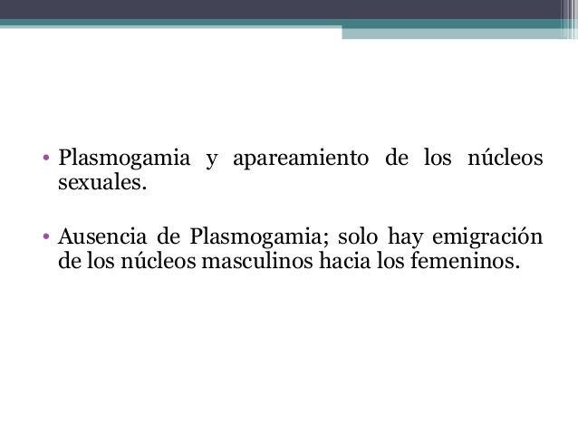 • Plasmogamia y apareamiento de los núcleos sexuales. • Ausencia de Plasmogamia; solo hay emigración de los núcleos mascul...