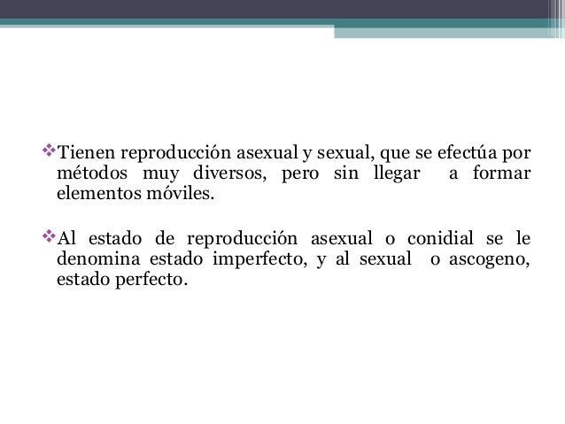 Tienen reproducción asexual y sexual, que se efectúa por métodos muy diversos, pero sin llegar a formar elementos móviles...